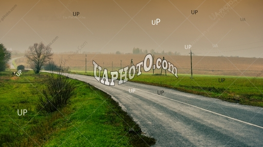 asphalt road among the fields, landscape in the countryside.